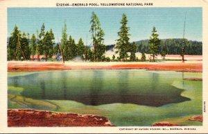 Yellowstone National Park Emerald Pool 1954 Curteich
