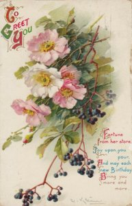 BIRTHDAY, PU-1912; To Greet You, Poem, Shirley Poppies