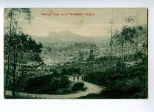 191408 CEYLON Nuwara Eliya from Rambodda Vintage postcard