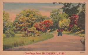 New Hampshire Greetings From Barnstead
