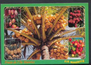 Mauritius Postcard - Tropical Fruits of Mauritius    T4381