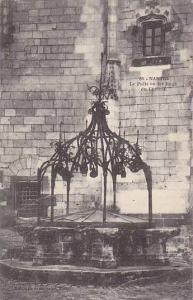 NANTES, Le Puits en fer forge du Chateau, Loire Atlantique, France, 00-10s