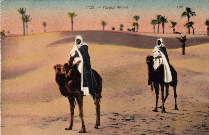 Paysage du Sud, Cap, Crossing the desert on camels, PU-1945