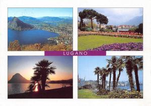 Switzerland Ticino Lugano General view Promenade Tulips Flowers Sunset
