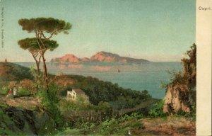 italy, CAPRI, Panorama (1900s) Hand Painted Postcard