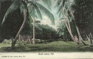 fiji islands, Road Scene (1910s) Gus. Arnold