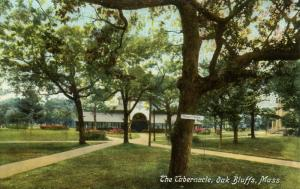 MA - Martha's Vineyard Island. Oak Bluffs. Methodist Tabernacle