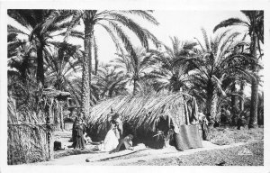 Lot121 houses in the palm grove gabes real photo Tunisia africa