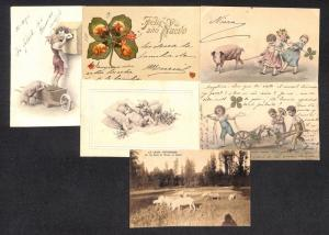 Greetings pigs luck new year 16 vintage postcards