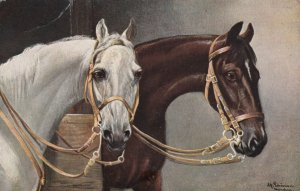 2 Horses, Alfred Schonian , 00-10s