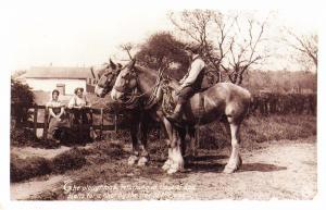 Nostalgia Postcard Plough Team, Ploughman, Horses, c1913 #CN11