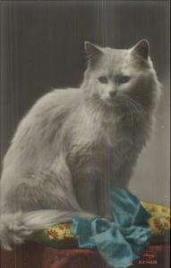 Fluffy White Long-Haired Cat & Ribbon c1910 Tinted Real Photo Postcard 63146/6