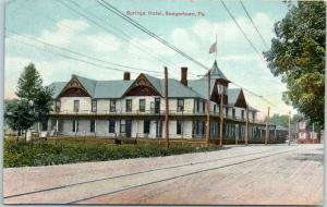 Saegertown, Pennsylvania Postcard SPRINGS HOTEL Building / Street View 1909