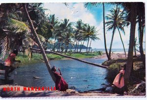 VINTAGE POSTCARD RIVER DELTA NORTH MANZANILLA TRINIDAD WEST INDIES SOUND CARD