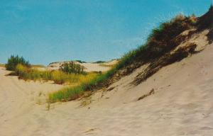 Sand Dunes on Outer Cape Cod - Massachusetts