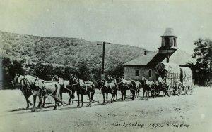 RPPC Freighting Team, Shasta, Ca. Vintage Postcard F71