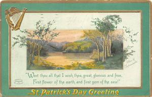 St Patrick's Day Post Card Old Vintage Antique 1911