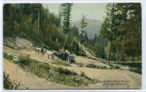 Horse & Coach Team Corkscrew Drive Tunnel Banff Canadian Rockies Canada postcard