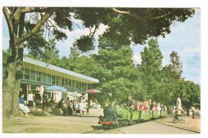 Model Railway Railroad Poole Park Dorset United Kingdom postcard