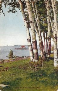 We-Que-Ton-Sing Michigan~Birches by Beach~Belvidere~1911 Postcard
