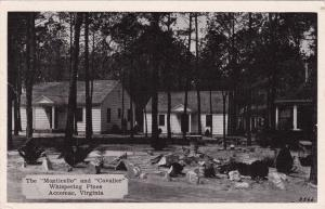 ACCOMAC, Virginia, pre-1907; Monticello and Cavalier cabins, Whispering Pines