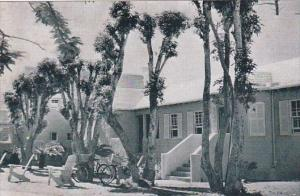 Bermuda Hamilton Group Of Cottages At The Princess Hotel