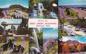 Greetings From Great Smoky Mountains National Park Tennessee 1962