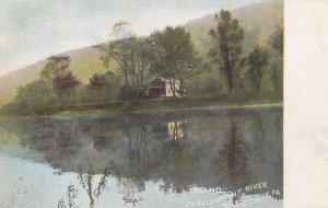 Near TIDIOUTTE, Pennsylvania, PU-1912; Island in Alleghany River