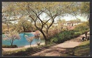 Ohio, Cleveland - Wade Park & Museum Of Art - University Circle - [OH-043]