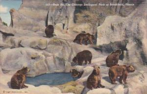 Illinois Chicago Zoological Park At Brookfield The Bear Pit Curteich