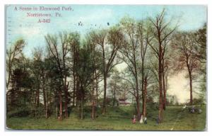 1910 Scene in Elmwood Park, Norristown, PA Postcard