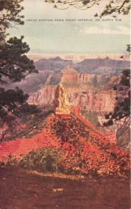 Grand Canyon National Park Arizona~Grand Canyon @ Point Imperial~North Rim~1950s