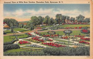 Mills Rose Garden, Thornden Park, Syracuse, N.Y., Early Postcard, Unused