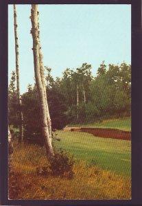P1565 vintage unused postcard prince edward  island brook at green gables canada