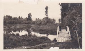 RP: Mill Creek , KELOWNA , B.C. , Canada , 00-10s