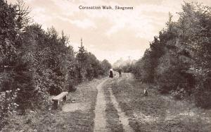 Coronation Walk, Skegness, England, Early Postcard, Unused