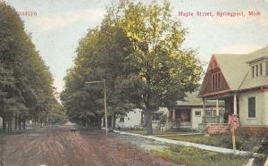 Springport MI~Dog in Center of Maple Street~Nice Homes~Porches~Dirt Road~1912 PC