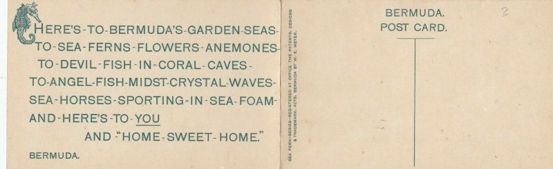 Sea Coral Tours , Bermuda, 1900-1910s;  Bi-Fold