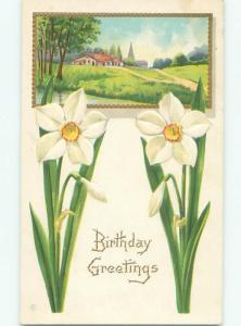 Divided-Back BEAUTIFUL FLOWERS SCENE Great Postcard AA3408