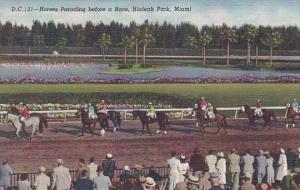 Florida Miami Horses Parading Before A Race Hialeah Park