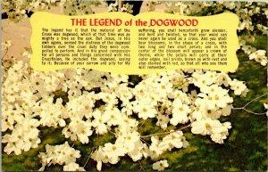 Postcard The Legend of the Dogwood Flower Jesus Christian Florida Unposted 1618