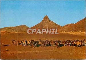 Postcard Modern Zagora caravan at sunset