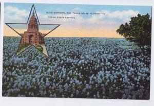 Blue Bonnets Texas State Flower Bluebonnets Kropp Linen Post