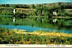 Idaho Hagerman Valley Thousand Springs