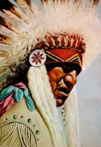 Native Americans The Patriarch By Dwight Roberts