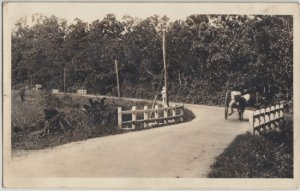 PORT OF SPAIN - REAL PHOTO of HORSE CART on rural road ... dated 1949