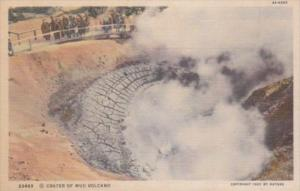 Crater Of Mud Volcano Yellowstone National Park Curteich