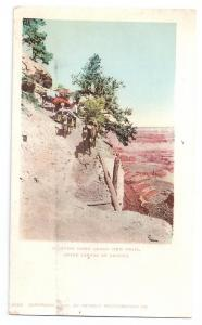Grand View Trail Grand Canyon AZ Mules 1902 Detroit Photo