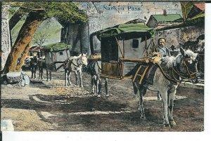 CE-236 China, Nankou Pass Divided Back Postcard near Great Wall Horses Ludwig