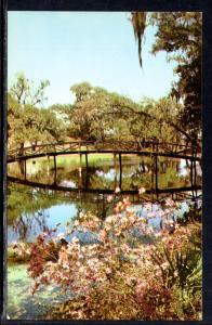 Middleton Gardens,near Charleston,SC BIN